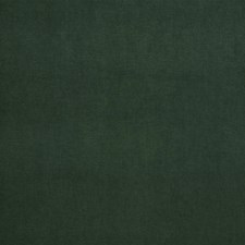 Evergreen Solid Decorator Fabric by Trend