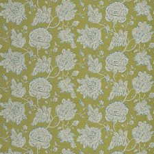 Grass Floral Decorator Fabric by Fabricut