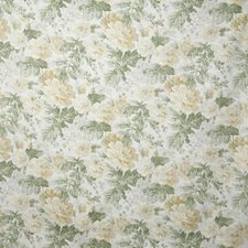 Moss Traditional Decorator Fabric by Pindler