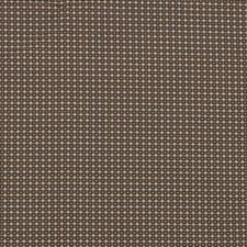 Brownie Decorator Fabric by Stout