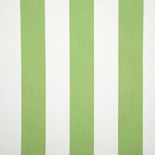 Lime Stripe Decorator Fabric by Pindler