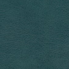 Allegro Shadow Green Decorator Fabric by Greenhouse