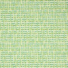 Citrus Solid Decorator Fabric by Greenhouse
