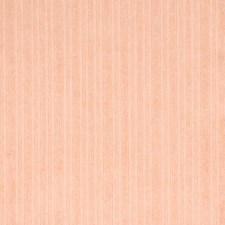 Peach Solid Decorator Fabric by Greenhouse