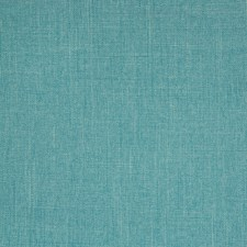 Caribe Solid Decorator Fabric by Greenhouse