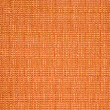 Mandarin Solid Decorator Fabric by Greenhouse