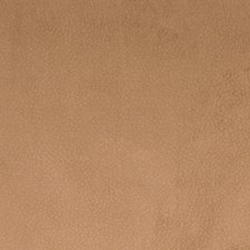 Vicuna Solid Decorator Fabric by Greenhouse