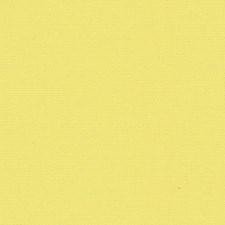 Primrose Decorator Fabric by Scalamandre