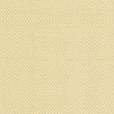 Creme Caramel Decorator Fabric by Scalamandre