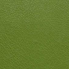 Avocado Decorator Fabric by Pindler