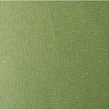 Limelight Solid W Decorator Fabric by Kravet
