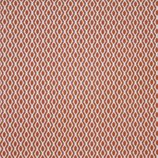 Grapefruit Decorator Fabric by Maxwell