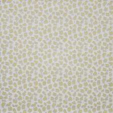 Lemon Decorator Fabric by Maxwell