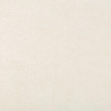 White/Ivory Animal Skins Decorator Fabric by Kravet