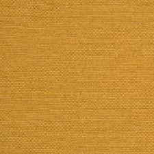 Ochre Solids Decorator Fabric by G P & J Baker