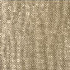 Radiant Solids Decorator Fabric by Kravet