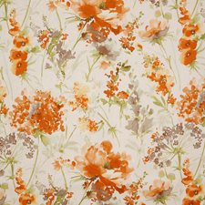 Apricot Contemporary Decorator Fabric by Pindler