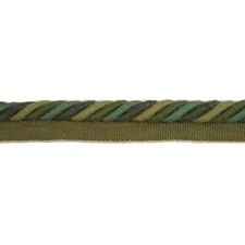 Cord Without Lip Herb Trim by Brunschwig & Fils