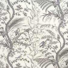 Gray Toile Decorator Fabric by Brunschwig & Fils