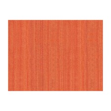 Mandarine Silk Decorator Fabric by Brunschwig & Fils