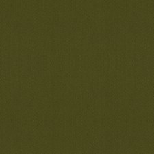 Loden Decorator Fabric by Brunschwig & Fils