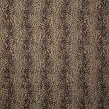 Safari Ethnic Decorator Fabric by Pindler
