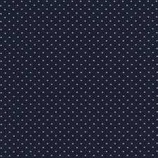 Mariner Decorator Fabric by Silver State