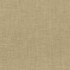 Camel Decorator Fabric by Kasmir