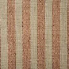 Spice Stripe Decorator Fabric by Pindler