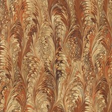 Brown/Beige/Orange Contemporary Decorator Fabric by Kravet