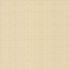 Alabaster Decorator Fabric by Kasmir