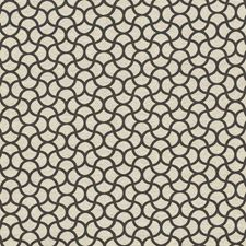 Thunder Decorator Fabric by Kasmir