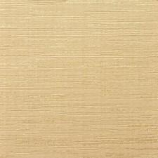 Albin Decorator Fabric by RM Coco