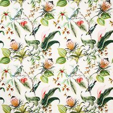 Tropic Print Decorator Fabric by Pindler