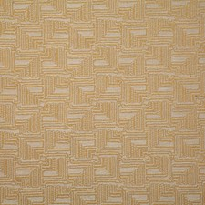 Sunshine Contemporary Decorator Fabric by Pindler