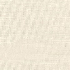 Cream Puff Decorator Fabric by RM Coco