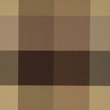 Brown Shadows Decorator Fabric by RM Coco