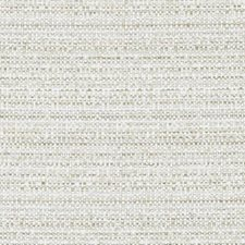 Parchment Texture Decorator Fabric by Duralee