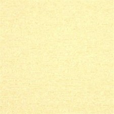 Champagne Solids Decorator Fabric by Threads