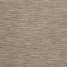 Limestone Solids Decorator Fabric by Clarke & Clarke