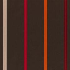 Spice Faux Silk Decorator Fabric by Clarke & Clarke