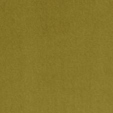 Palm Solids Decorator Fabric by Clarke & Clarke