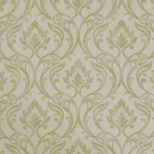 Citrus Weave Decorator Fabric by Clarke & Clarke