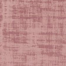 Blush Decorator Fabric by Clarke & Clarke