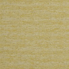 Chartreuse Solids Decorator Fabric by Clarke & Clarke