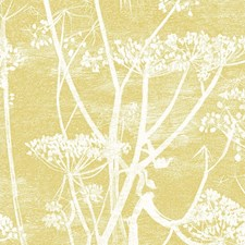 Wht/Chartre Botanical Decorator Fabric by Cole & Son