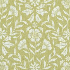 Citron Damask Decorator Fabric by Clarke & Clarke
