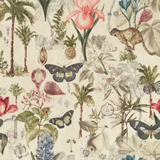 Tropical Decorator Fabric by Clarke & Clarke