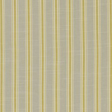 Citrus Weave Decorator Fabric by Clarke & Clarke