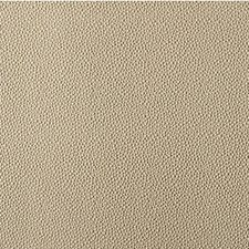 Radiant Animal Skins Decorator Fabric by Kravet